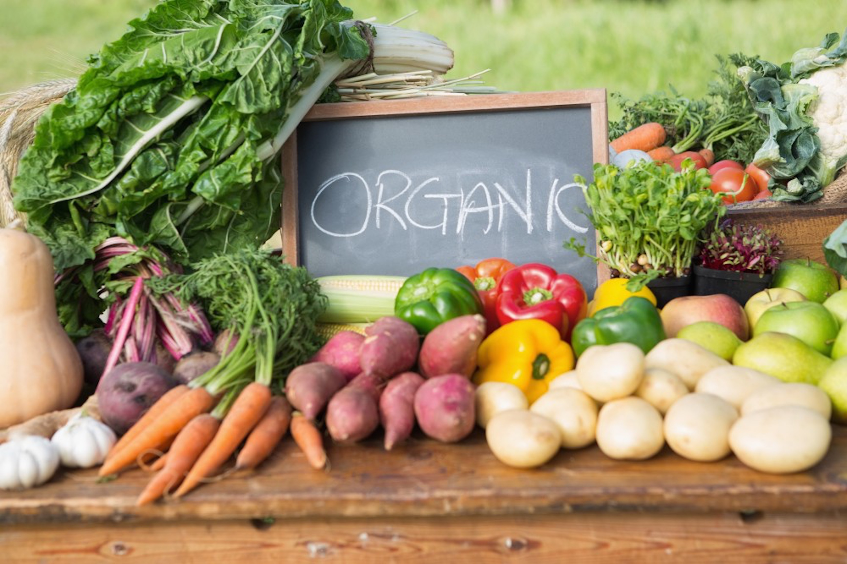 A case for organic food